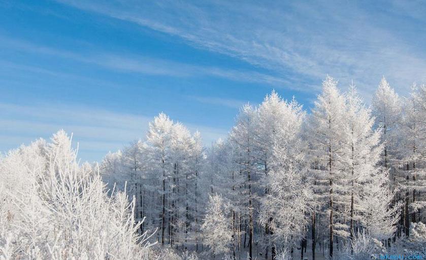 醉美冬日大兴安岭 色彩斑斓如诗如画
