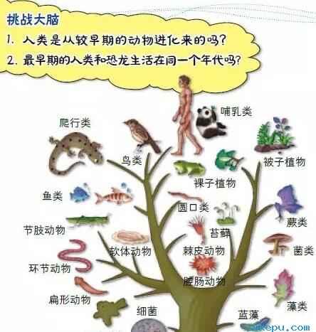 人与恐龙生活在同一时代会怎样