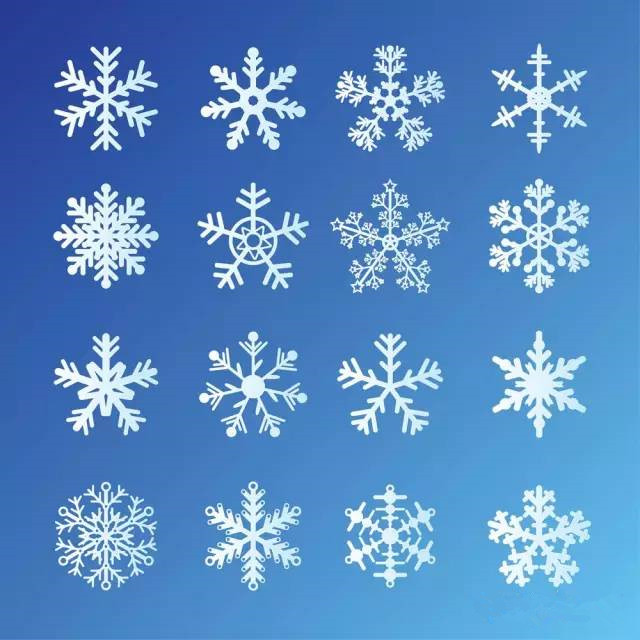 雪后微观景致