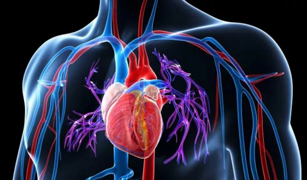 高血压是最常见的慢性病,也是心脑血管病最主要的危险因素。虽然吃高血压药物能使血压得到一定控制,但是有没有一些饮食上的治疗能够不用吃药来缓解这种高血压呢?