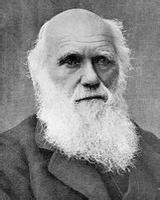 """查尔斯•罗伯特•达尔文(C.R.Darwin,1809.2.12―1882.4.19),英国生物学家,生物进化论的奠基人。达尔文的《物种起源》这一划时代的著作,提出了生物进化论学说,从而摧毁了各种唯心的神造论和物种不变论。除了生物学外,他的理论对人类学、心理学、哲学的发展都有不容忽视的影响 。恩格斯将""""进化论""""列为19世纪自然科学的三大发现之一。"""